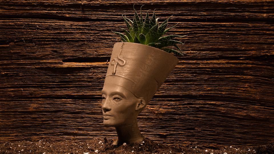 Nefertiti bust by Adafruit